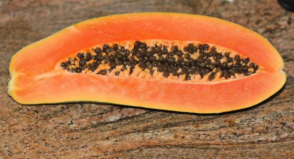 papaya-74585_1280