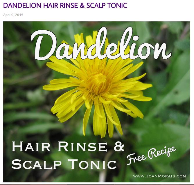 dandelion hair rinse