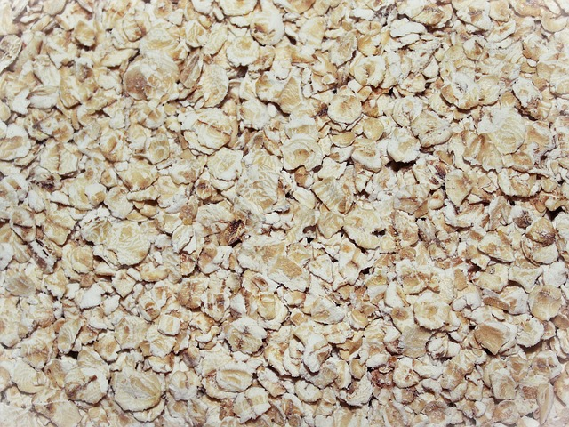oatmeal for digestion