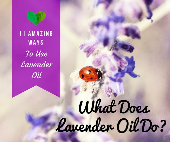 which lavender essential oil is best