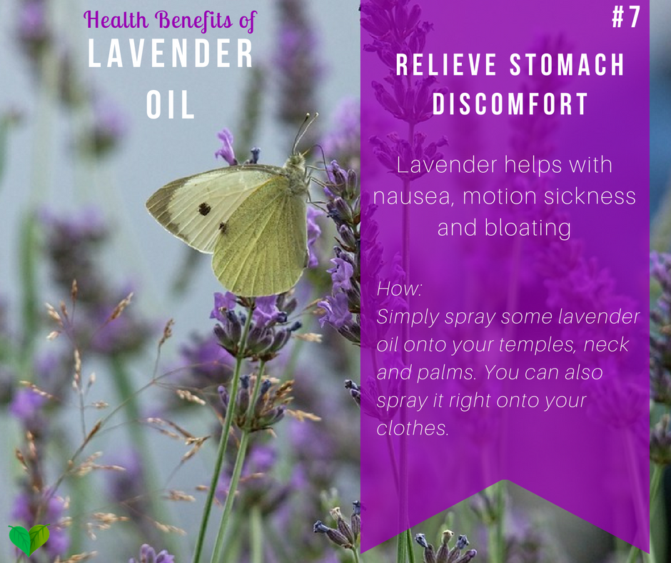 lavender for stomach