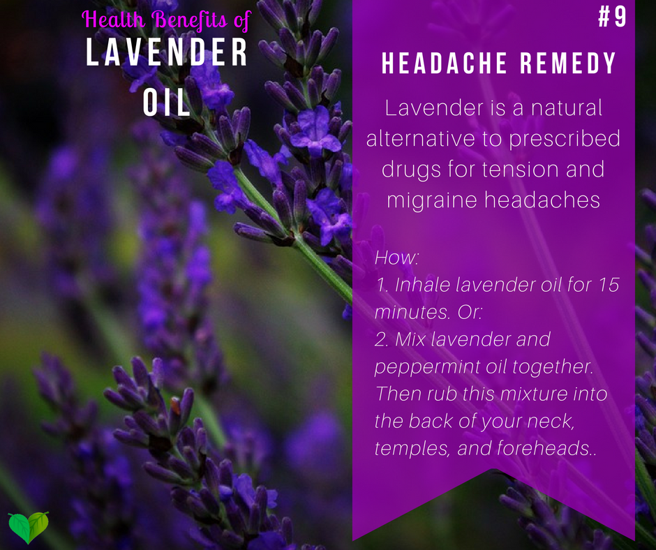 lavender for headache