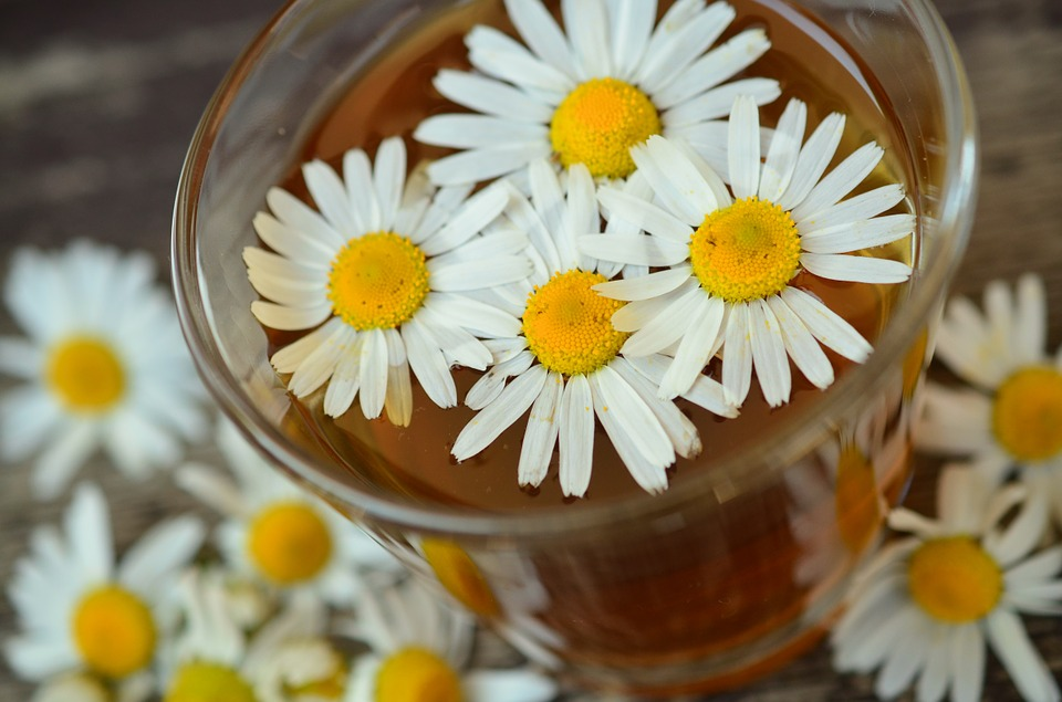 how to make chamomile hair lightener for your hair