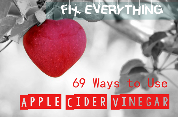 what apple cider vinegar does for your body
