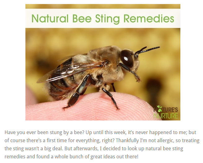 natural bee sting remedy