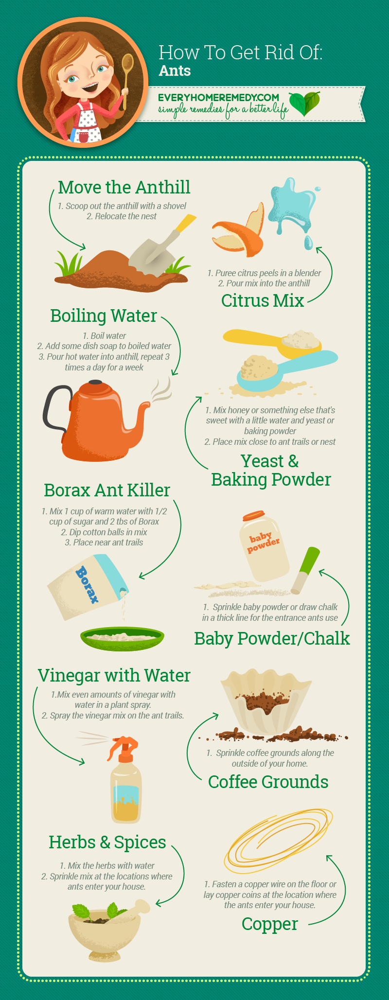 How to Get Rid of Ants in the House Naturally: 10 Easy Ways |