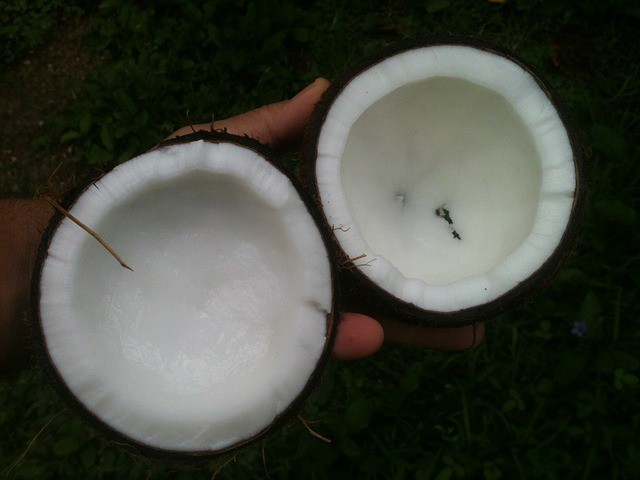 coconut oil dry skin