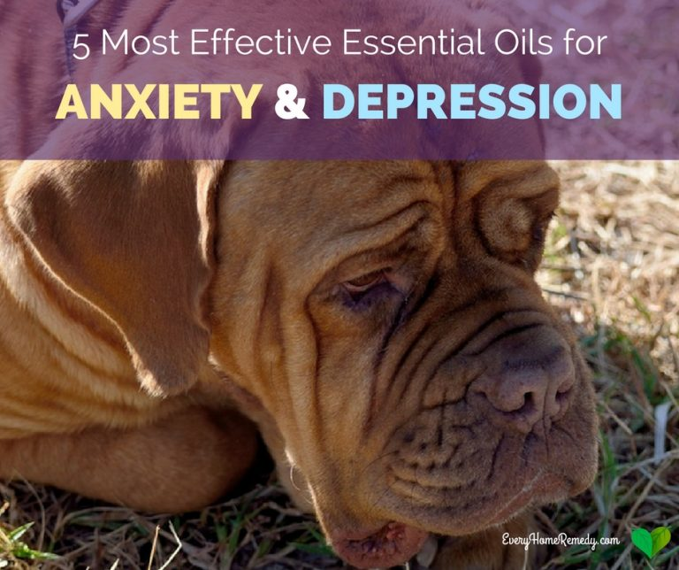 essential oils to help with anxiety attacks
