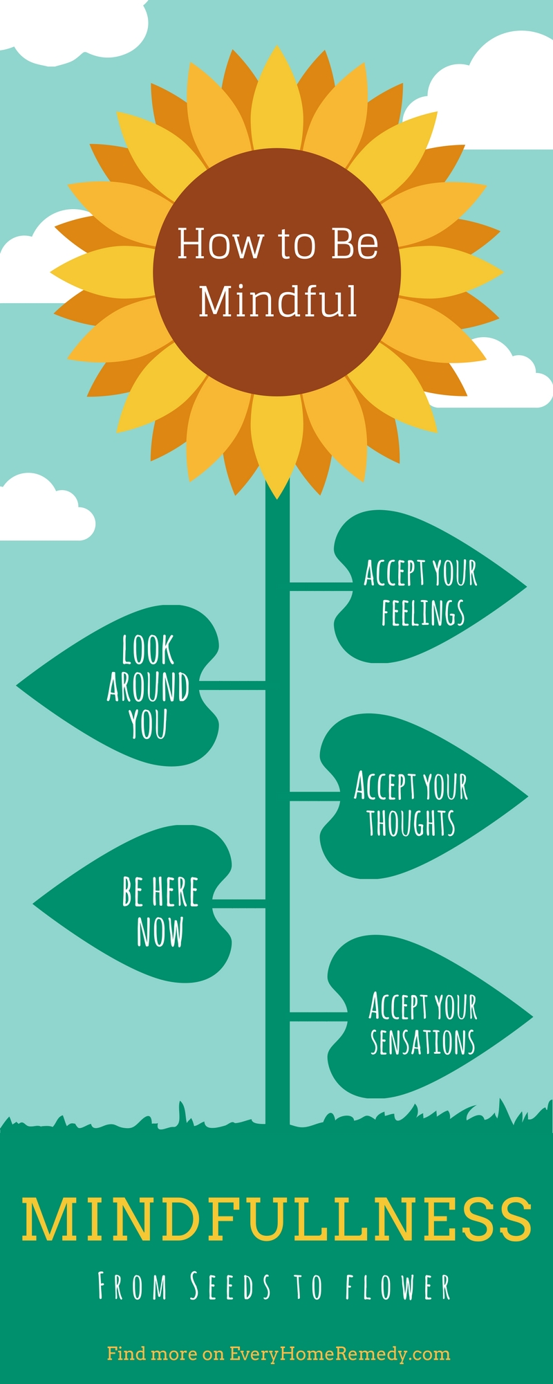 practice mindfullness